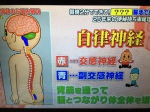 腸ストレス